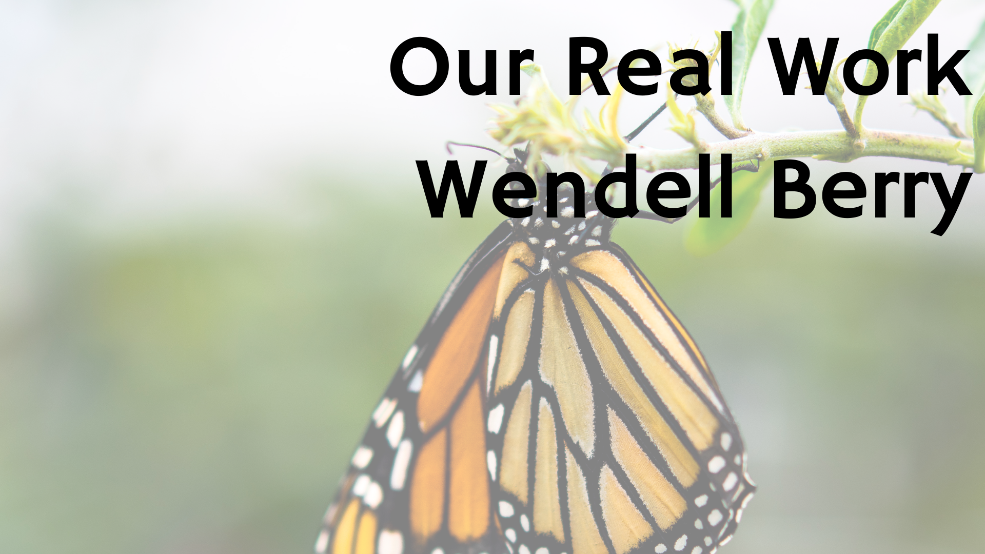 Our Real Work by Wendell Berry